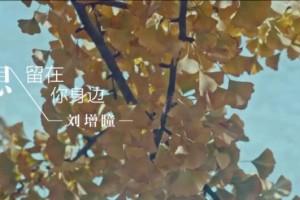 刘增瞳 - 多想留在你身边 720P高清