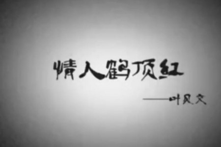 叶贝文 - 情人鹤顶红 720p 高清HDMV