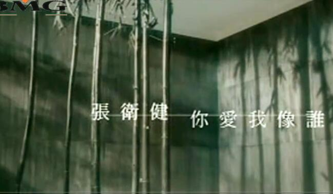张卫健 - 你爱我像谁 BMG 2019