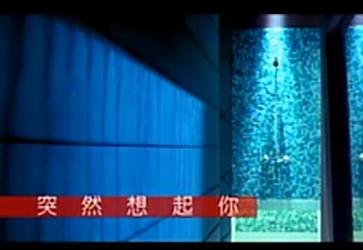 萧亚轩 - 突然想起你 VCD画质改善版