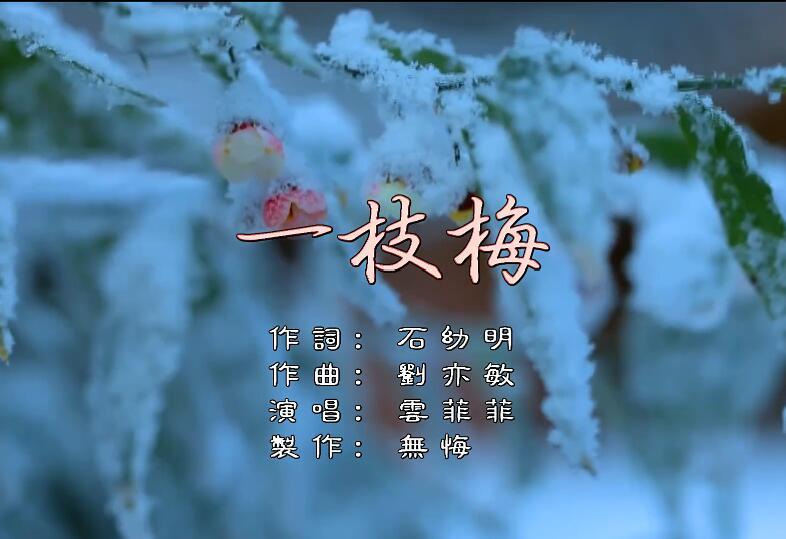 云菲菲- 一枝梅 高清MV
