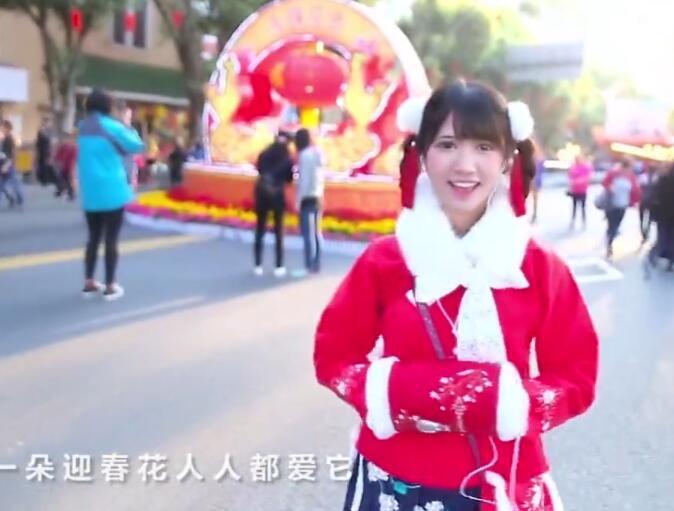 新年喜庆MV:迎春花