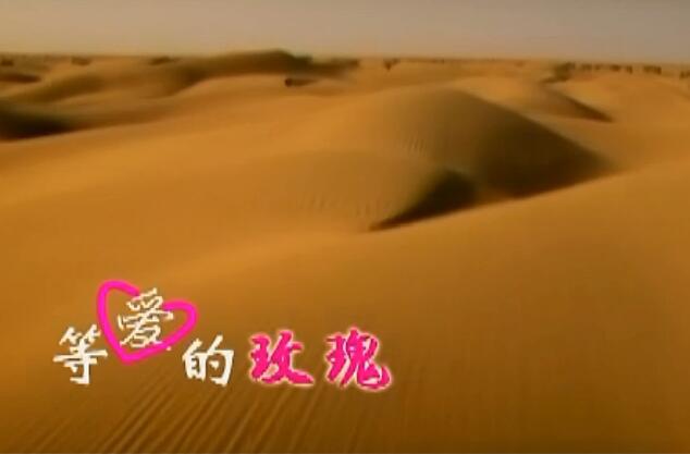 凤凰传奇 - 等爱的玫瑰 MV版