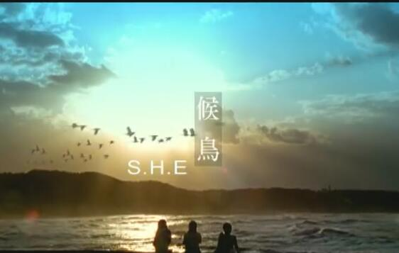 S.H.E [候鸟 Migratory Bird] Official Music Video 高清MV