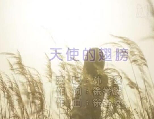 车载mv_孙露-天使的翅膀