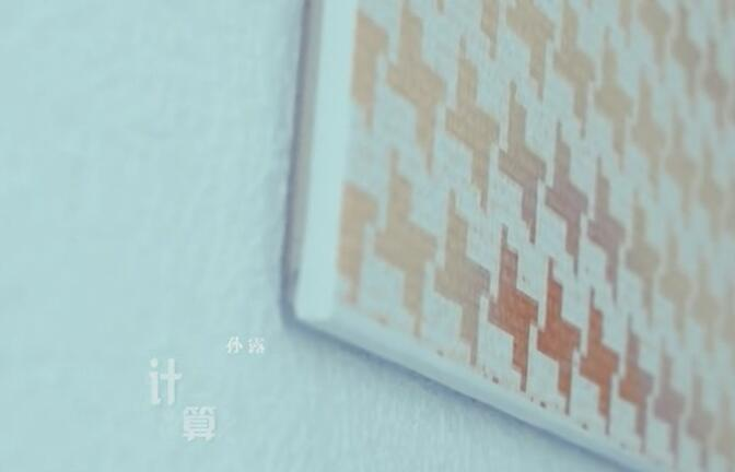Mp4_孙露-计算-车载mv