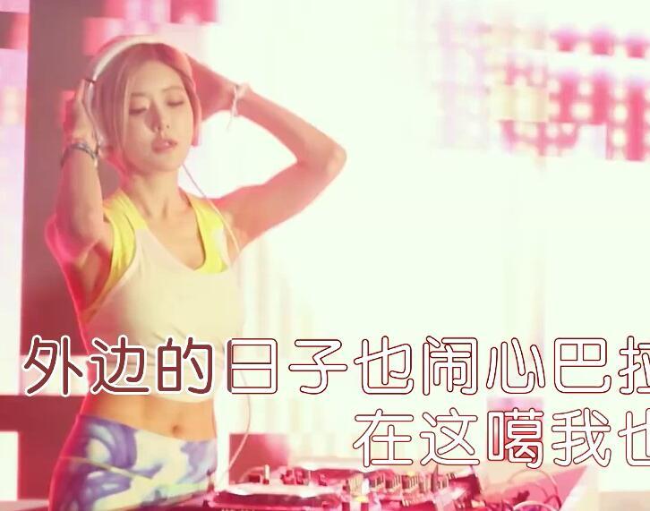 花姐-醉(DJ版)_国语(卡拉OK版)-车载MV