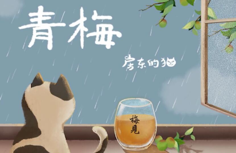 房东的猫 – 青梅 MV