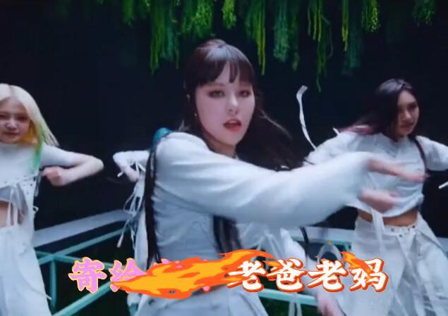 九妹翻唱版 高清车载MV